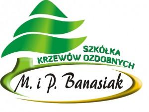 LogoBanasiak
